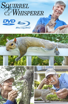 Squirrel Whisperer on DVD
